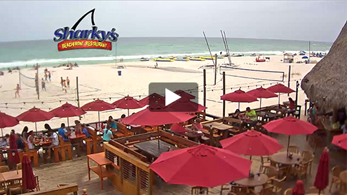 live web cams Sharky's Beach Restaurant in Panama City Beach FL