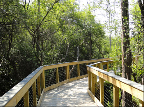 Conservation Park Panama City Beach Trail Map