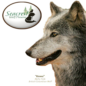 Where or how do I find Seacrest Wolf Preserve in Chipley FL