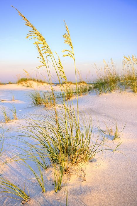 Panama City Beach Celebrates National Tourism Day