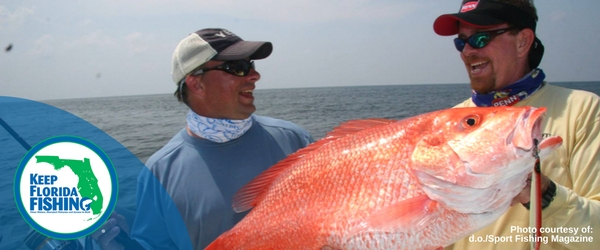 40 Day Snapper Recreational Season in Gulf Waters