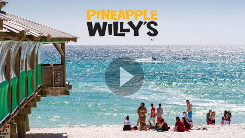 live web cams Pineapple Willy's in Panama City Beach FL